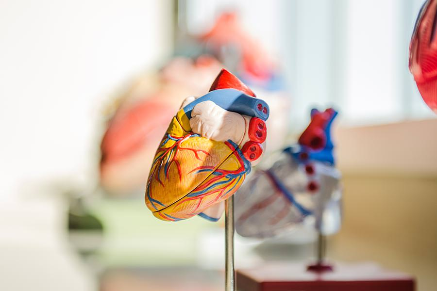 real-benefits-group-cpr-training-heart