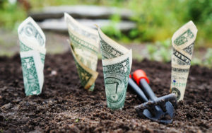 multiple-employer-program-401k-retirement-plan-aliat-money-growing-garden