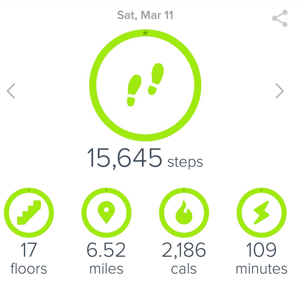 Fitbit-Screenshot-2017.03.11