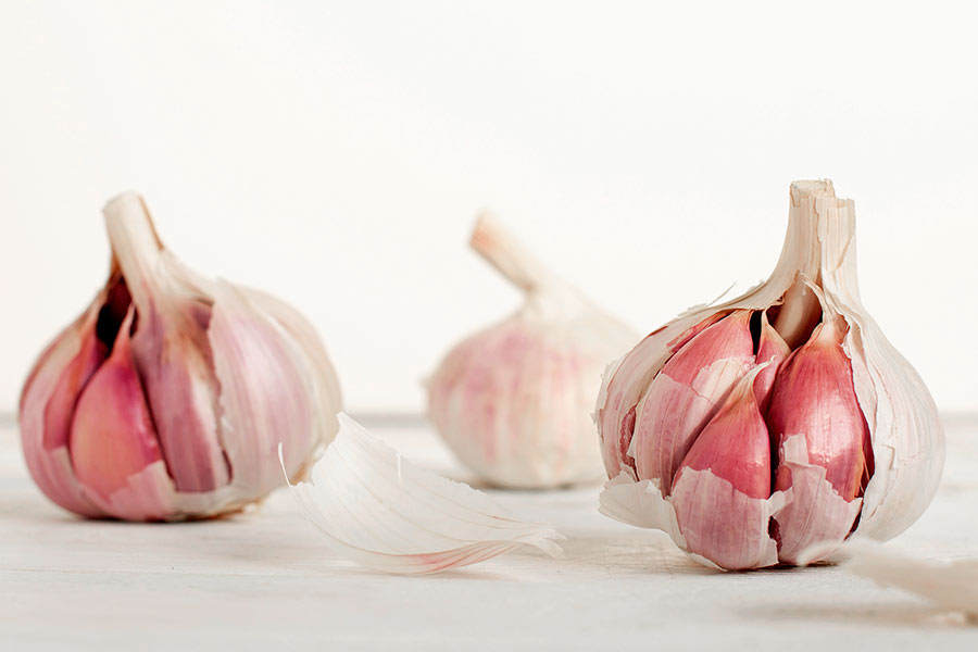 real-benefits-group-garlic