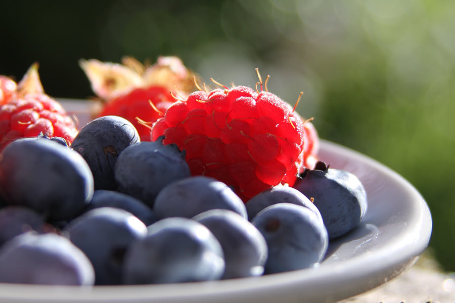 real-benefits-group-keto-diet-berries