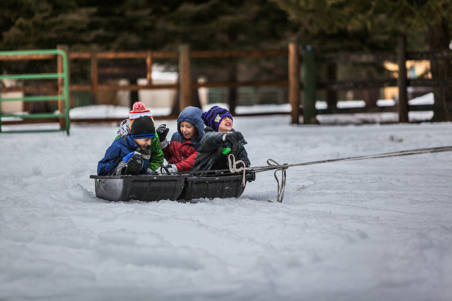 holiday-activities-sledding