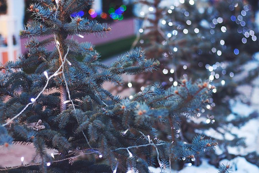 holiday-blues-christmas-tree
