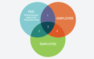 explaining-co-employment-relationship-professional-employer-organization-peo-aliat