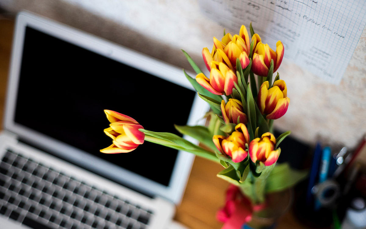 spring-cleaning-tulips-desk-computer-clean-workspace-aliat